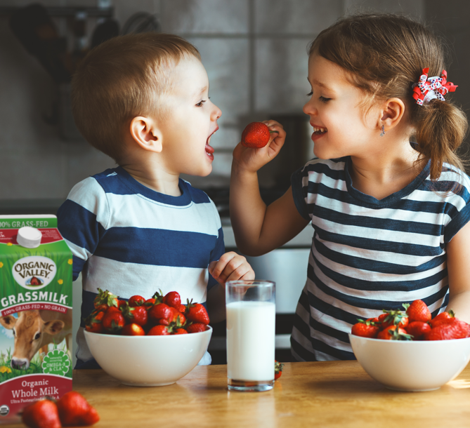 Two children sharing strawberries and Organic Valley Grassmilk.